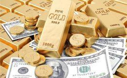 قیمت دلار و سکه رکورد دار شد